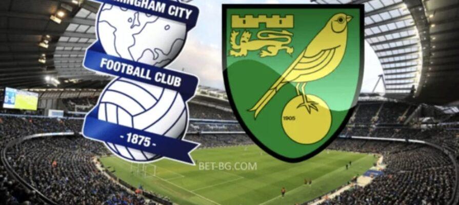 Birmingham - Norwich bet365